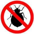 ticks / bed bugs